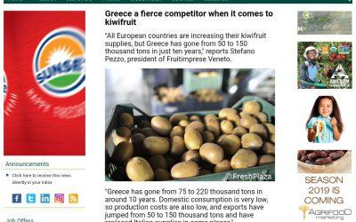Με ιδανικό μικροκλίμα και έμπειρους καλλιεργητές το ελληνικό ακτινίδιο είναι το super φρούτο που έχει κατακτήσει τη δική του θέση στο τραπέζι των Ευρωπαίων.